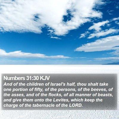 Numbers 31:30 KJV Bible Verse Image