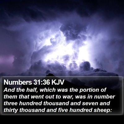 Numbers 31:36 KJV Bible Verse Image