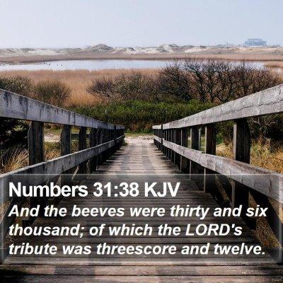 Numbers 31:38 KJV Bible Verse Image