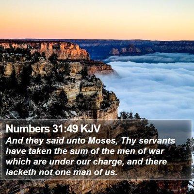 Numbers 31:49 KJV Bible Verse Image