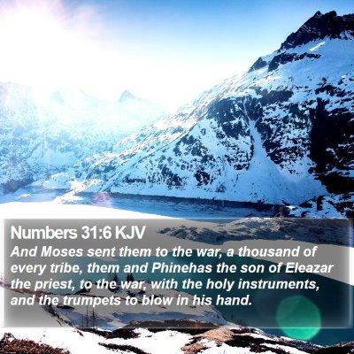 Numbers 31:6 KJV Bible Verse Image