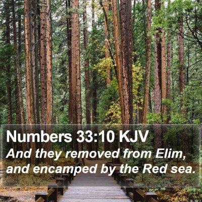 Numbers 33:10 KJV Bible Verse Image
