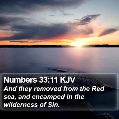 Numbers 33:11 KJV Bible Verse Image