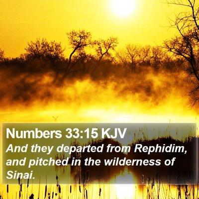 Numbers 33:15 KJV Bible Verse Image