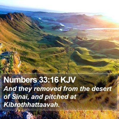 Numbers 33:16 KJV Bible Verse Image