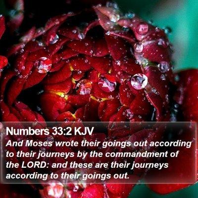 Numbers 33:2 KJV Bible Verse Image