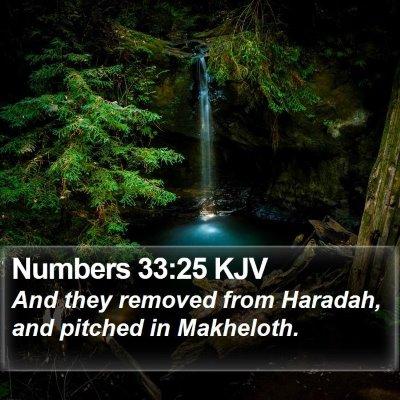 Numbers 33:25 KJV Bible Verse Image
