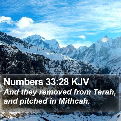 Numbers 33:28 KJV Bible Verse Image