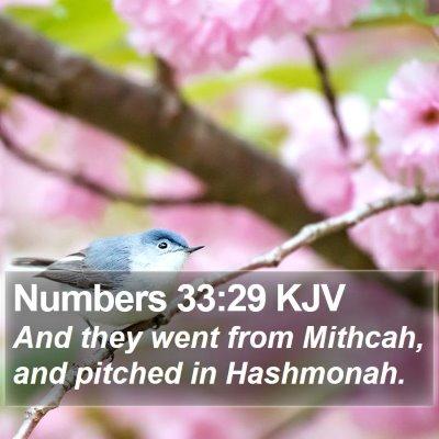 Numbers 33:29 KJV Bible Verse Image
