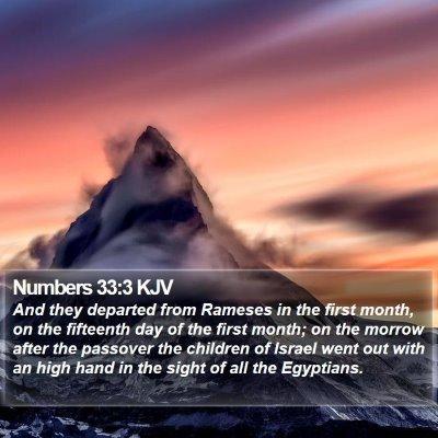 Numbers 33:3 KJV Bible Verse Image