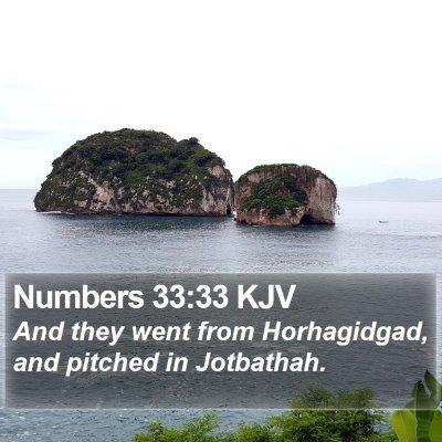 Numbers 33:33 KJV Bible Verse Image
