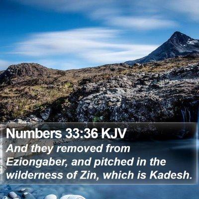 Numbers 33:36 KJV Bible Verse Image