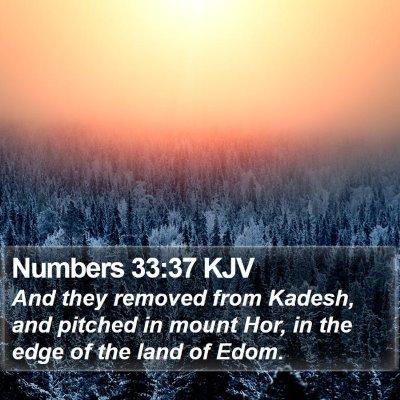 Numbers 33:37 KJV Bible Verse Image