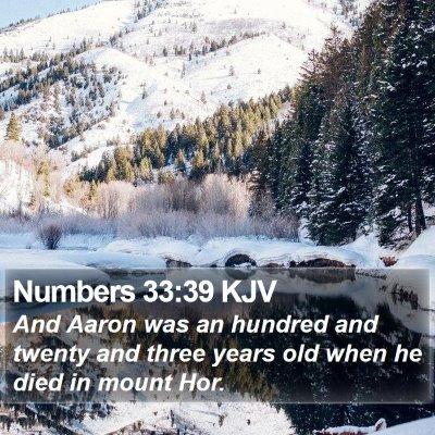 Numbers 33:39 KJV Bible Verse Image
