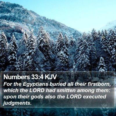 Numbers 33:4 KJV Bible Verse Image