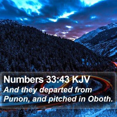 Numbers 33:43 KJV Bible Verse Image