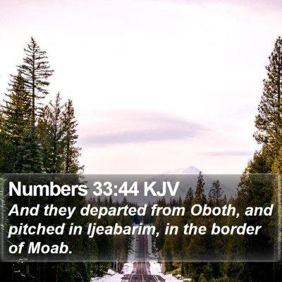 Numbers 33:44 KJV Bible Verse Image