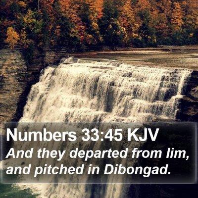 Numbers 33:45 KJV Bible Verse Image