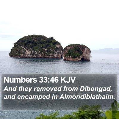 Numbers 33:46 KJV Bible Verse Image