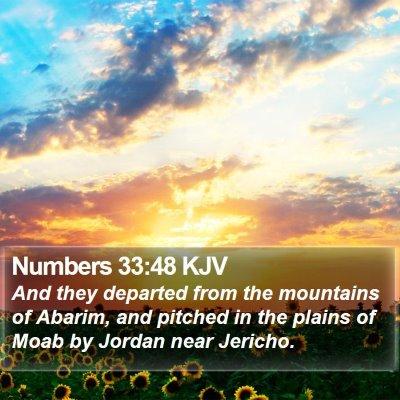 Numbers 33:48 KJV Bible Verse Image