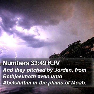 Numbers 33:49 KJV Bible Verse Image