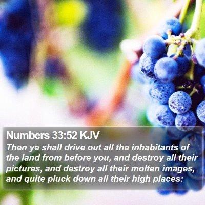 Numbers 33:52 KJV Bible Verse Image