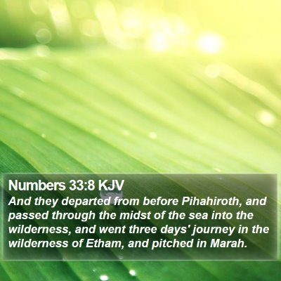 Numbers 33:8 KJV Bible Verse Image