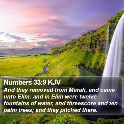 Numbers 33:9 KJV Bible Verse Image
