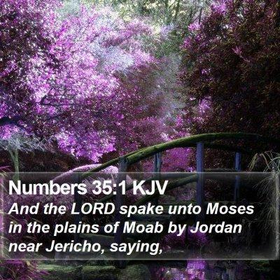 Numbers 35:1 KJV Bible Verse Image