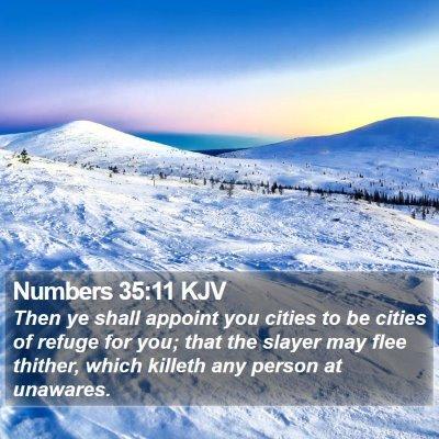 Numbers 35:11 KJV Bible Verse Image