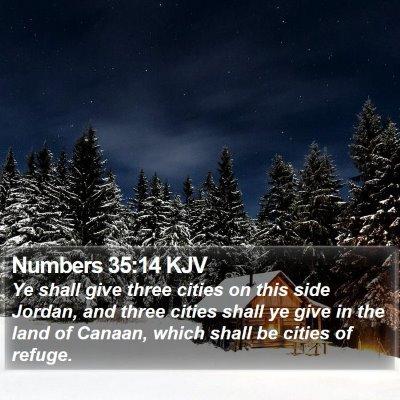 Numbers 35:14 KJV Bible Verse Image