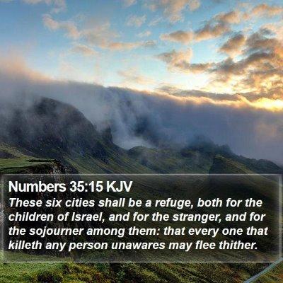 Numbers 35:15 KJV Bible Verse Image