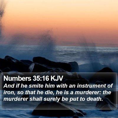 Numbers 35:16 KJV Bible Verse Image