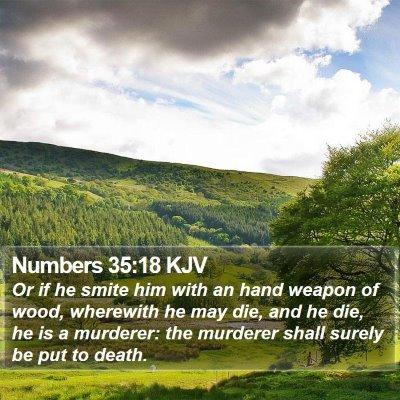 Numbers 35:18 KJV Bible Verse Image