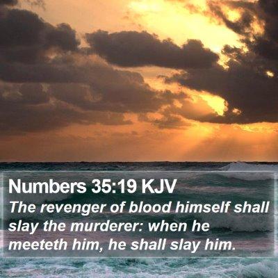 Numbers 35:19 KJV Bible Verse Image