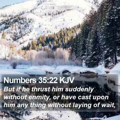 Numbers 35:22 KJV Bible Verse Image