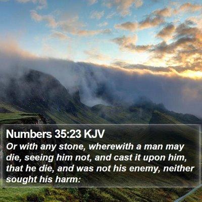 Numbers 35:23 KJV Bible Verse Image