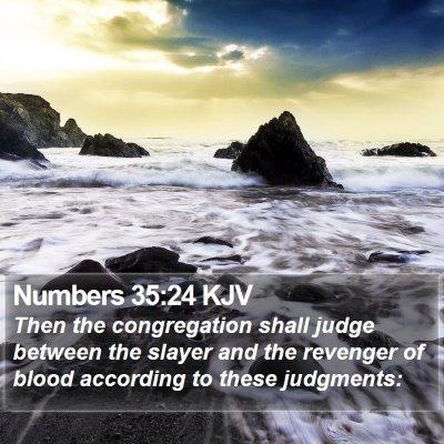 Numbers 35:24 KJV Bible Verse Image