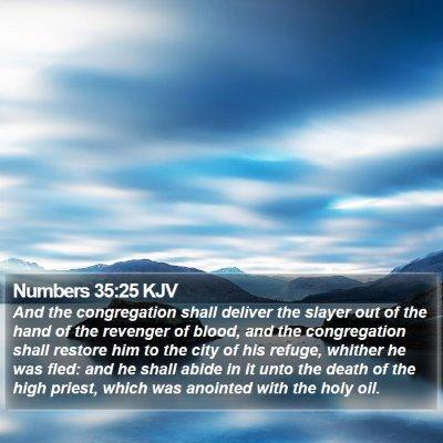 Numbers 35:25 KJV Bible Verse Image