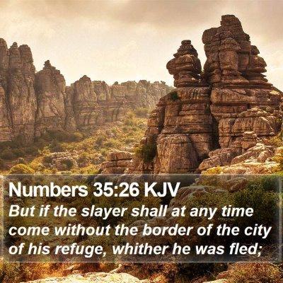 Numbers 35:26 KJV Bible Verse Image