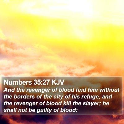 Numbers 35:27 KJV Bible Verse Image