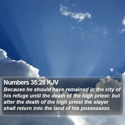 Numbers 35:28 KJV Bible Verse Image