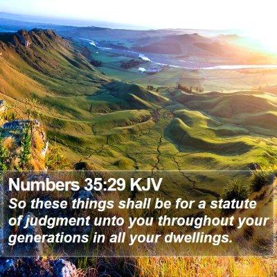 Numbers 35:29 KJV Bible Verse Image