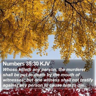 Numbers 35:30 KJV Bible Verse Image