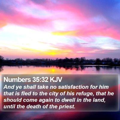 Numbers 35:32 KJV Bible Verse Image