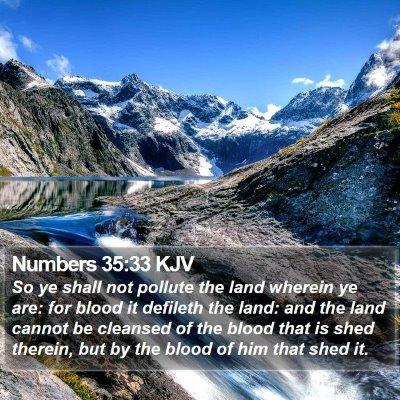Numbers 35:33 KJV Bible Verse Image