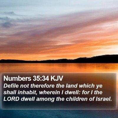 Numbers 35:34 KJV Bible Verse Image