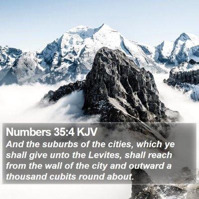 Numbers 35:4 KJV Bible Verse Image