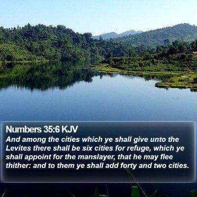 Numbers 35:6 KJV Bible Verse Image