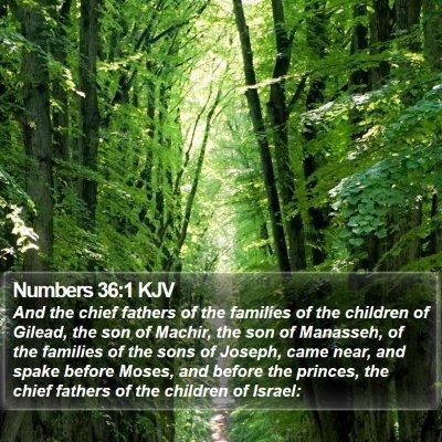 Numbers 36:1 KJV Bible Verse Image
